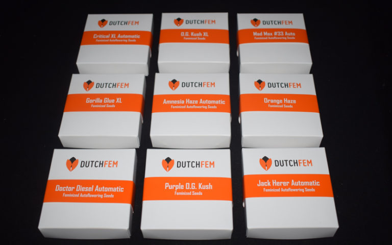 New Cannabis Strains from Dutchfem Cannabis Seeds
